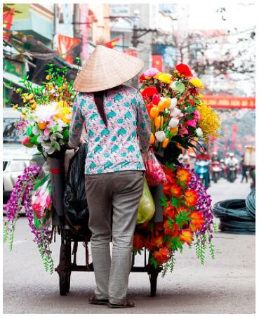 Culture and Swimming in Indochina 2